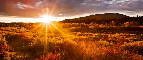 Sunrise Mountains Prarie 566 239px